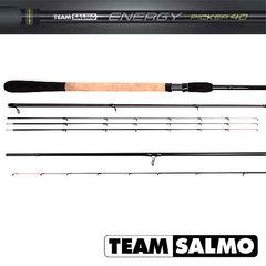 Удилище фидерное Salmo Team ENERGY Feeder 40 (92997)Удилища фидерные<br>Серия фидерных удилищ TEAM SALMO Energy Feeder, предназначена для различных условий ловли. Шесть удилищ серии, изготовленные из карбона T36, позволят ловить рыбу как легкими кормушками на близком расстоянии, так и на больших реках с кормушками весом до 18...<br>