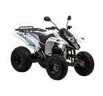 Квадроцикл Baltmotors Junior 100.jpg