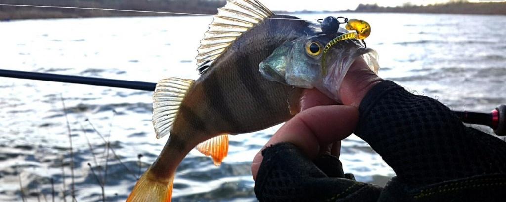 скоростной рыболовный