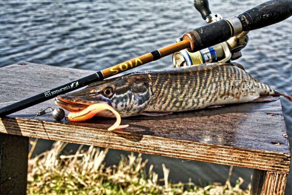 рыбалка в серпухове прогноз клева